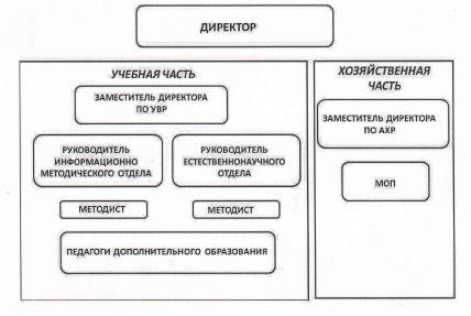 Структура ЭБЦ